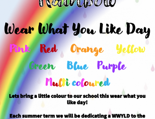 Rainbow Wear What you Like Day – 28th May